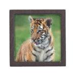 Un tigre de bebé lindo caja de recuerdo de calidad