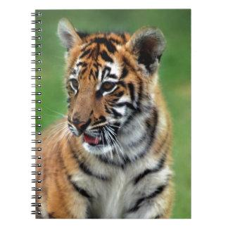 Un tigre de bebé lindo libro de apuntes con espiral