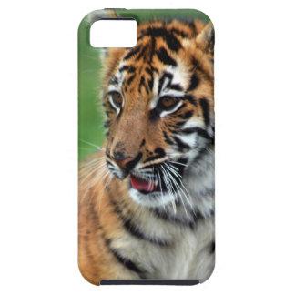 Un tigre de bebé lindo iPhone 5 Case-Mate cárcasa