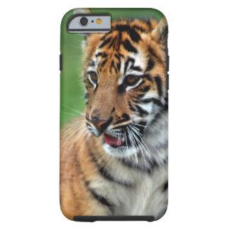 Un tigre de bebé lindo funda de iPhone 6 tough