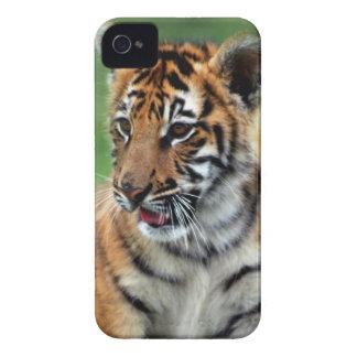 Un tigre de bebé lindo funda para iPhone 4 de Case-Mate