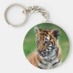 Un tigre de bebé lindo llaveros personalizados