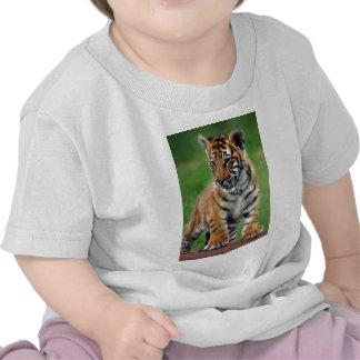Un tigre de bebé lindo camiseta