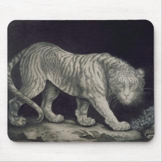 Un tigre de vagabundeo lápiz en el papel tapete de raton