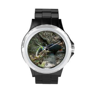 Un Toucan se encarama en raíces del árbol en el Reloj