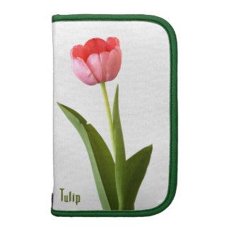 Un tulipán rosado planificador
