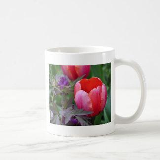 Un tulipán y otro sale de II Taza De Café
