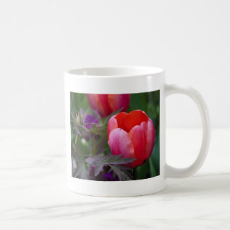 Un tulipán y otro se va taza