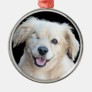 Un un perro observado hermoso adorno redondo plateado