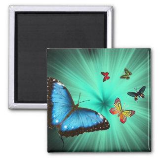 Un viaje de Butterflys Imanes Para Frigoríficos