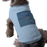 Un vuelo de la gaviota en aire camisa de perro