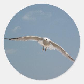 Un vuelo de la gaviota en aire pegatinas redondas