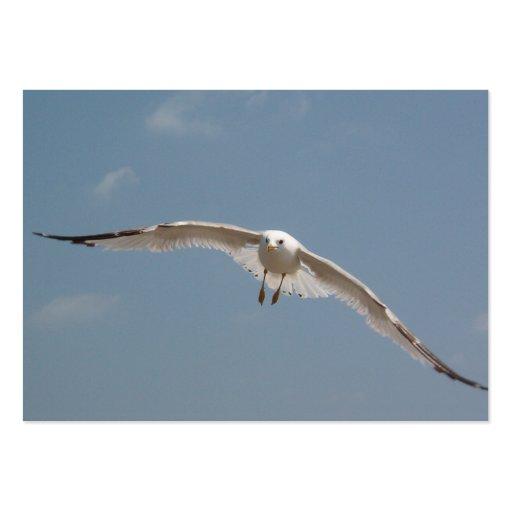 Un vuelo de la gaviota en aire plantillas de tarjetas de visita