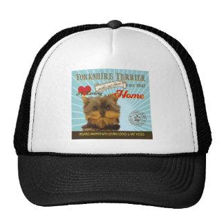 Un Yorkshire Terrier cariñoso hace nuestro hogar d Gorros Bordados