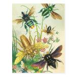 Un zumbido de las postales hermosas de las abejas