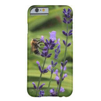 Una abeja en la flor de la lavanda funda barely there iPhone 6