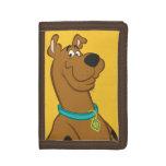 Una actitud que linda más linda 15 de Scooby Doo