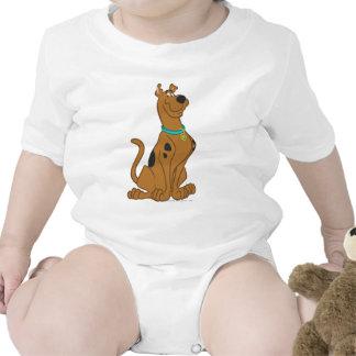 Una actitud que linda más linda 15 de Scooby Doo Camiseta