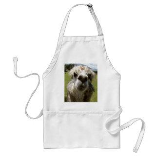 Una alpaca lanuda delantal