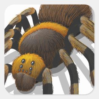 Una araña del Tarantula Pegatina Cuadrada