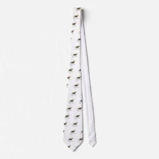 Una araña orbe-que teje spined corbata