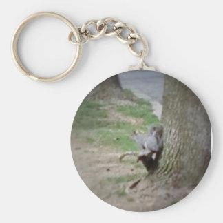 Una ardilla en una raíz del árbol llavero redondo tipo chapa