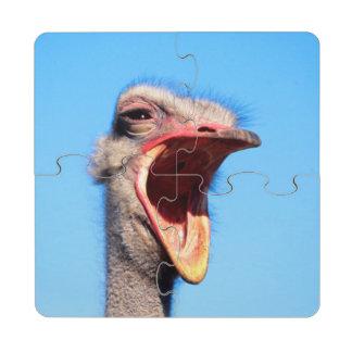 Una avestruz que muestra la agresión posavasos de puzzle