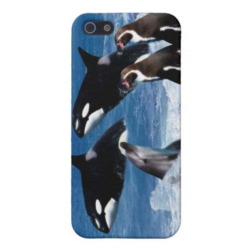 Una ballena de un mundo iPhone 5 carcasa