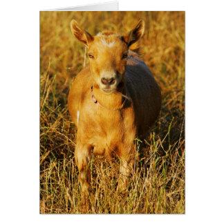 Una cabra linda tarjeta de felicitación