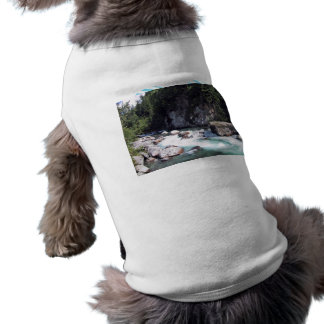 Una cala fría de la montaña ropa de perro