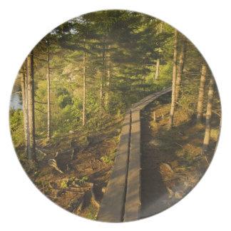 Una calzada de madera en el parque nacional Maine  Plato Para Fiesta