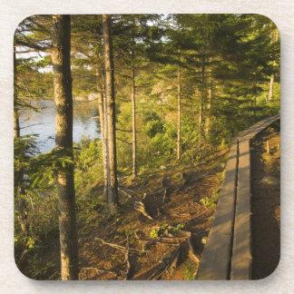 Una calzada de madera en el parque nacional Maine  Posavasos
