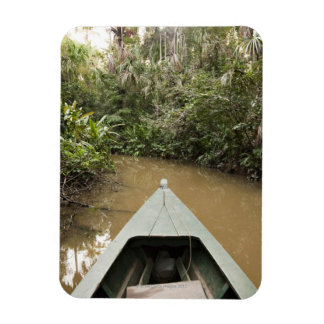 Una canoa de madera hecha del árbol de Eucylptus f Iman Flexible