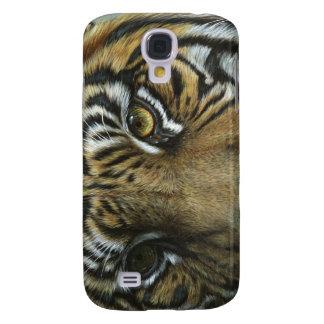 Una cara del tigre