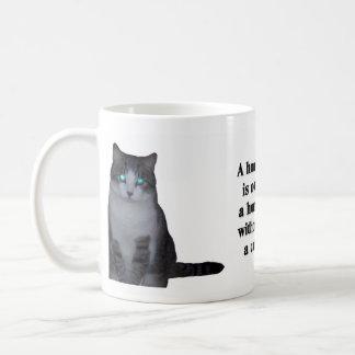 Una casa no es un hogar sin un gato taza de café