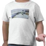 Una casa señorial abandonada camiseta