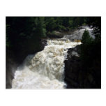 Una cascada con los árboles y las rocas tarjeta postal