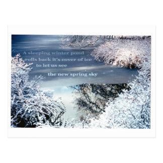 Una charca del invierno el dormir tarjeta postal
