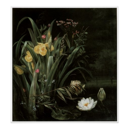Una charca del lirio, 1855 póster