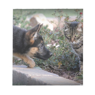 Una cola de dos Kittys Bloc De Notas