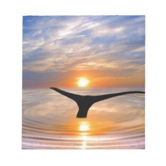 Una cola de las ballenas en la puesta del sol libretas para notas