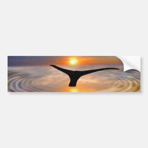 Una cola de las ballenas en la puesta del sol etiqueta de parachoque