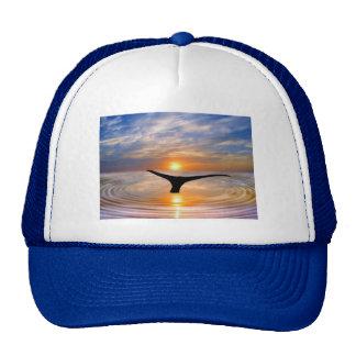Una cola de las ballenas en la puesta del sol gorras de camionero