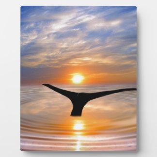 Una cola de las ballenas en la puesta del sol placa para mostrar