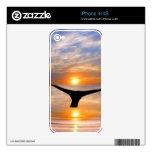 Una cola de las ballenas en la puesta del sol iPhone 4S skins