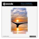 Una cola de las ballenas en la puesta del sol iPhone 3 skin