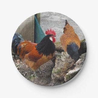 Una consumición de los pares, del gallo y de la platos de papel
