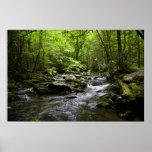 Una corriente ahumada pacífica de la montaña impresiones