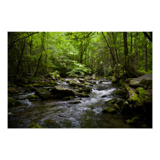 Una corriente ahumada pacífica de la montaña póster