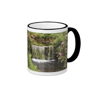 Una corriente y una cascada en el parque nacional taza de dos colores